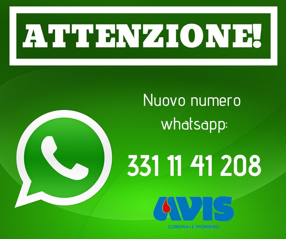 Nuovo numero whatsapp 3311141208